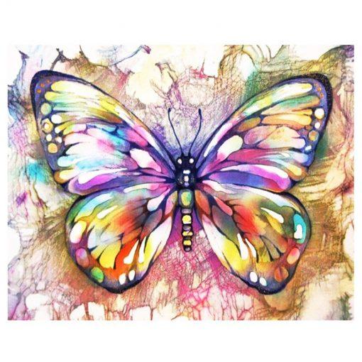 arty butterfly